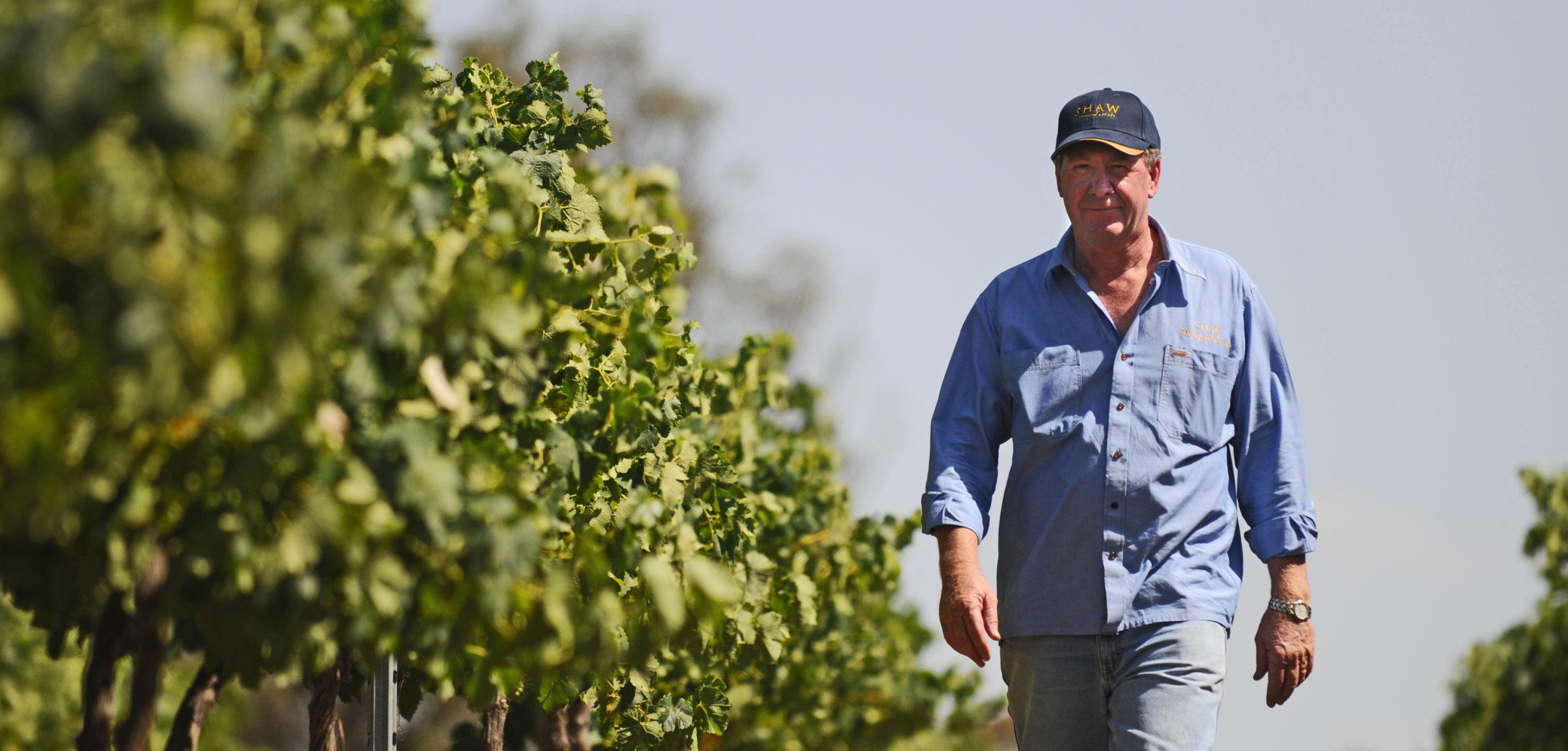 graeme-shaw-in-vineyard